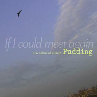 푸딩(PUDDING) - IF I COULD MEET AGAIN [LP/VINYL]